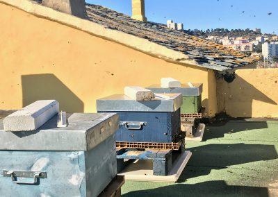Ruches Sud Hotel Bastia
